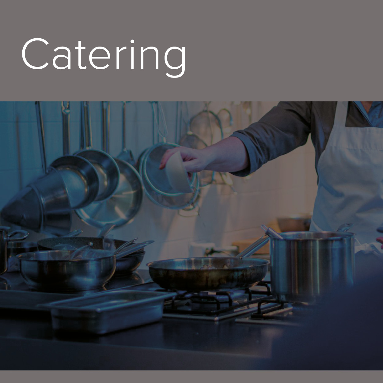 A decorative image of the Catering industry in which Alphasonics cater to.